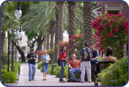 El Prado--The Main Walkway on Campus