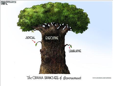 Obama Branches