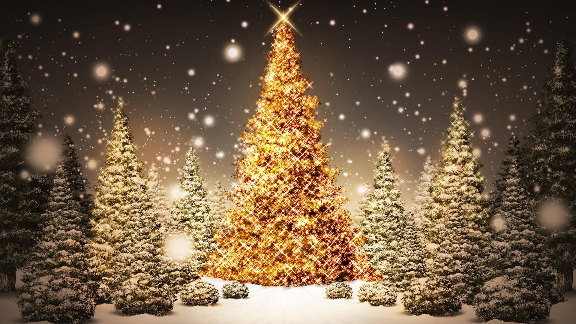Christmas Images Pondering Principles