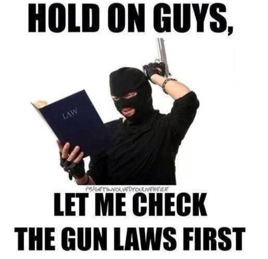 Check Gun Laws