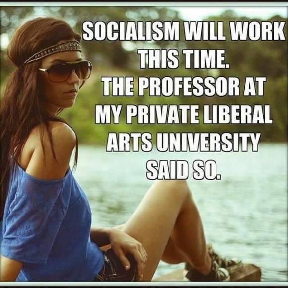 Socialism Will Work
