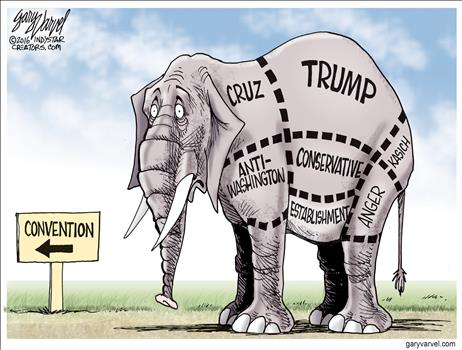 Divided Elephant