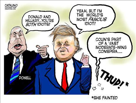 both-idiots
